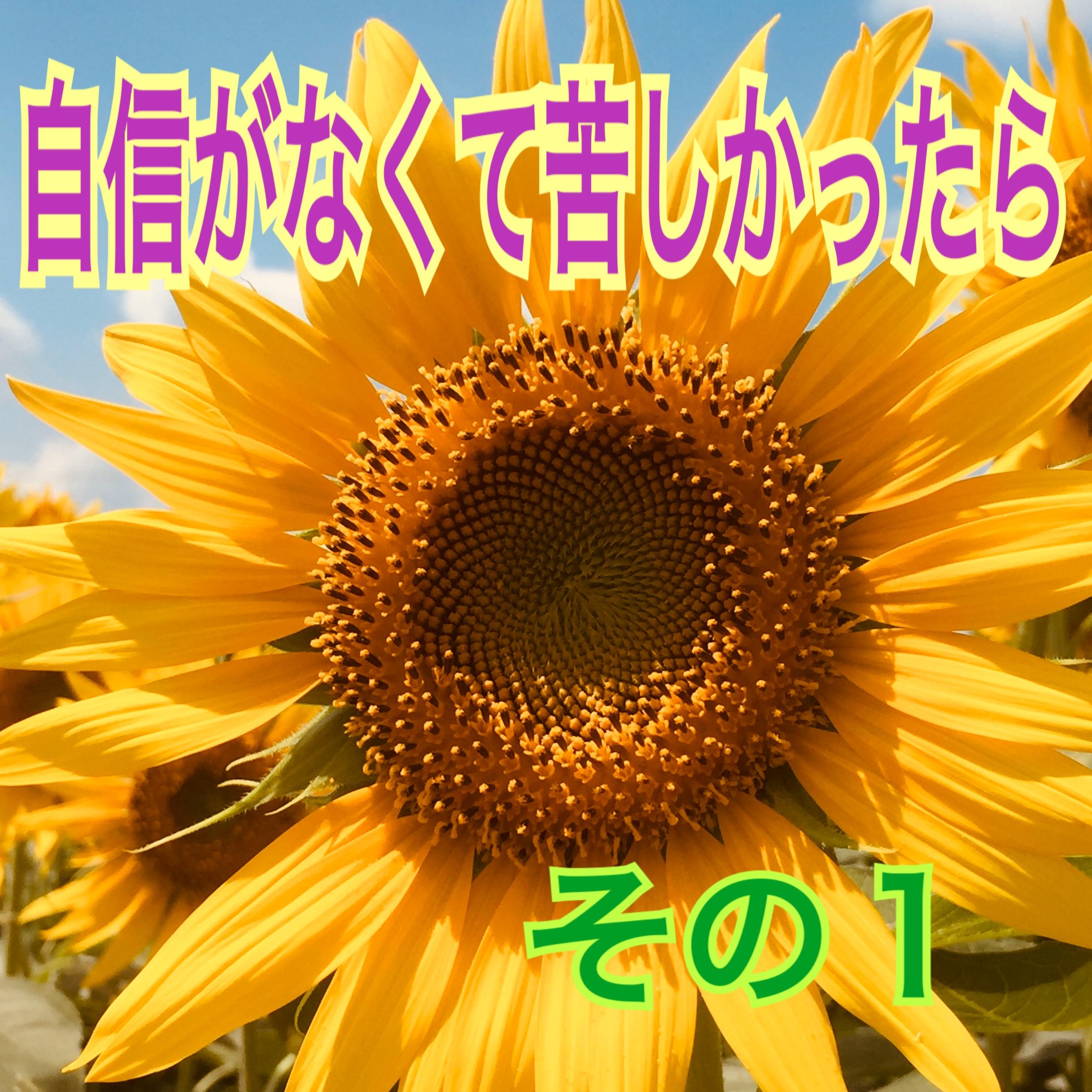 5888B317-4E64-41AE-862F-A535B330100E